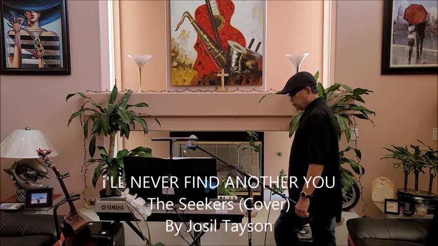 I'll Never Find Another You / The Seekers (Cover)