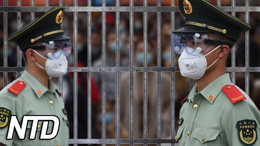 Kinas nedstängdning skapar en tragedi | NTD NYHETER