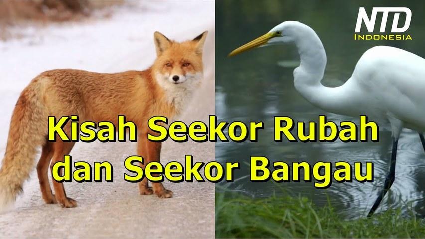 Kisah Seekor Rubah dan Seekor Bangau