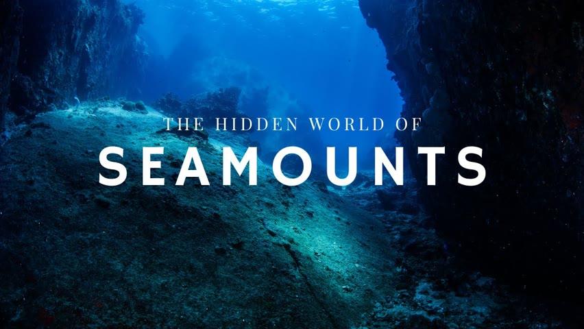 The Hidden World of Seamounts
