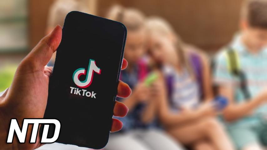 WSJ: TikTok visar videor om droger och sex till minderåriga | NTD NYHETER