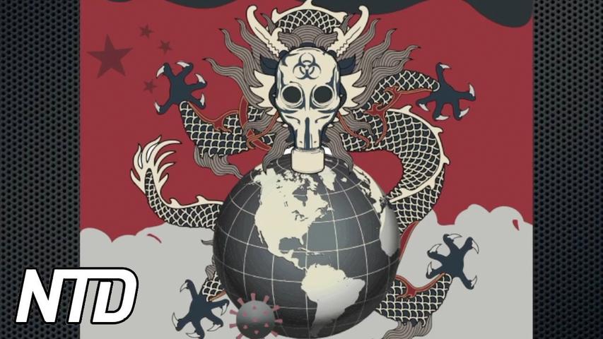 Rapport: Så hotar Nya Sidenvägen världens länder | NTD NYHETER