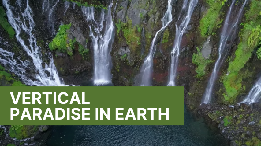 Vertical Paradise in Earth