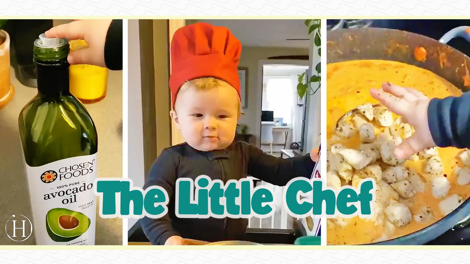 Chef Kobe | Humanity Life