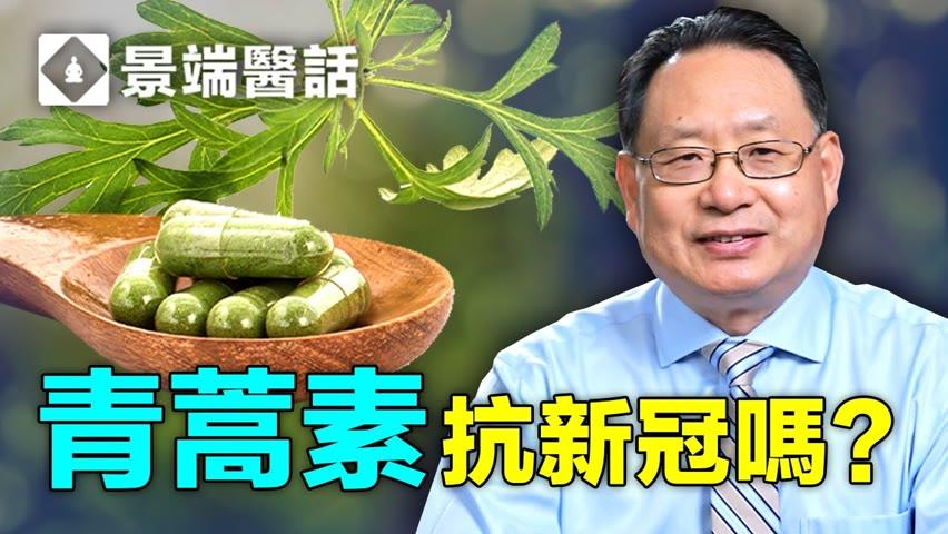 青蒿素(Artemisia annua)和青蒿琥酯能防治新冠病毒?實驗證明黃花蒿提取物能抑制兩種變種病毒?楊醫生分析青蒿素的來龍去脈,以及體外實驗成果。