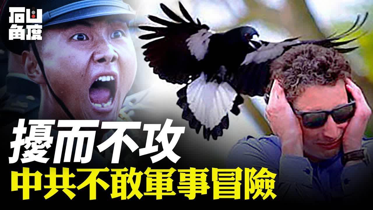 最近美國政局混亂,中共加緊軍事擾台。但中共從來不敢冒險採取大型軍事行動,在沒有把握對付美國之前,對台灣會繼續擾而不攻。【石山角度】(國語)| 2021.2.02