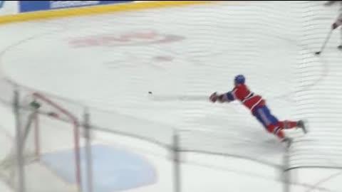 Unbelievable Hockey Saves