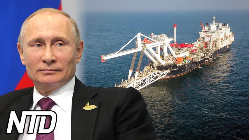 Putin: Gasledning kan snabbt pumpa gas till EU | NTD NYHETER