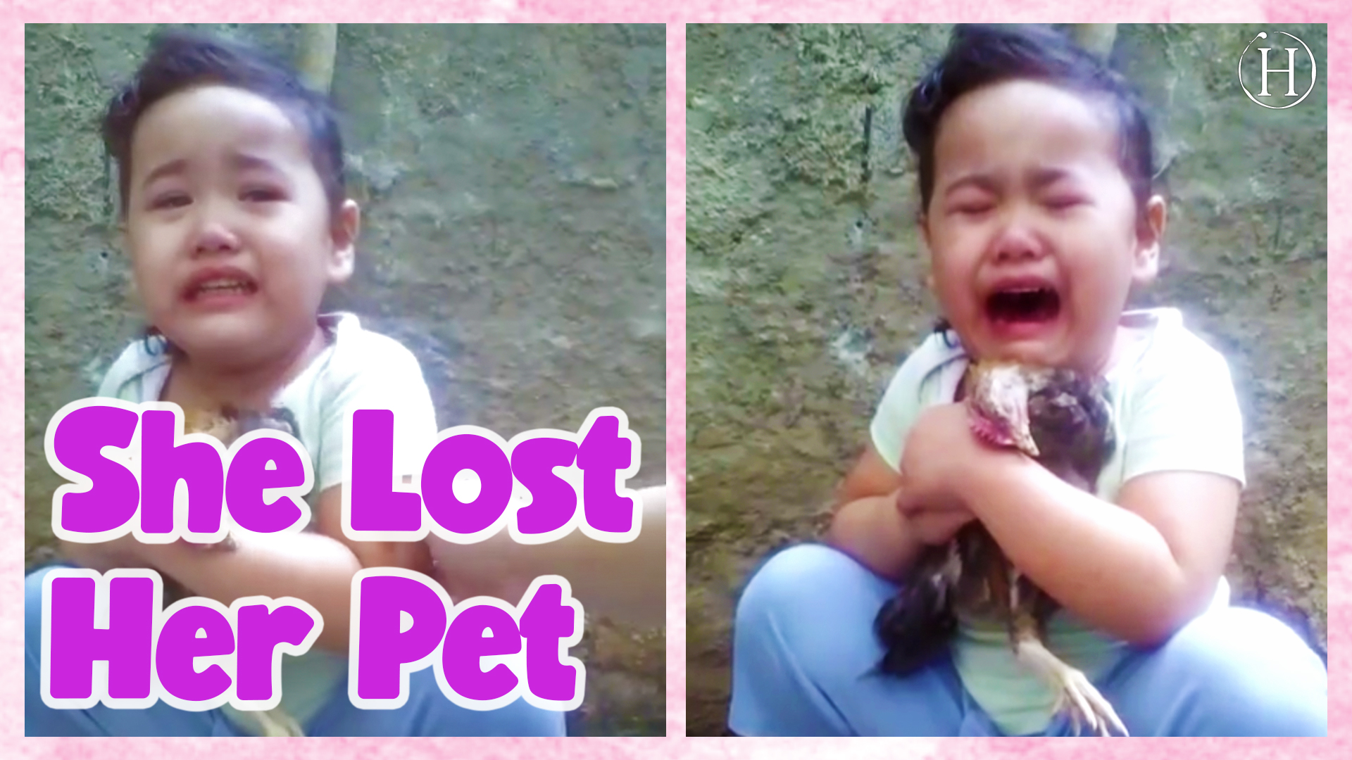 Young Girl Mourns the Loss of Pet Chicken | Humanity Life