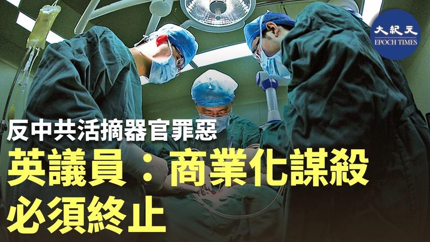 (粵語) 9月17至26日,連續兩個周末舉行第76屆聯合國大會。由歐、美、亞洲5個組織聯合舉辦「打擊及防制活摘器官之世界峰會」,已結束3場視像會議。