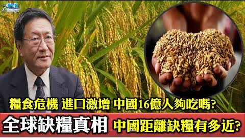 全球缺糧真相 中國距離缺糧有多近? 糧食危機 進口激增 中國16億人夠吃嗎?210728