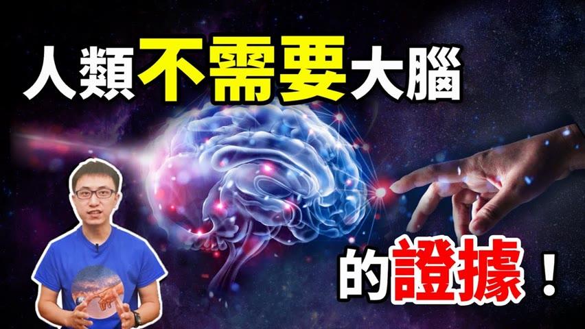 驚 ! 無腦也能存活 ! 人類意識到底來自哪裡 ? 科學證實大腦可在11層維度運行 ! 【地球旅館】