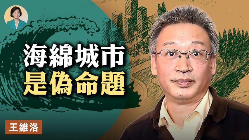 【方菲訪談】專訪王維洛(下):海綿城市是偽命題;習近平不去鄭州去西藏,要搞超三峽工程?這次洪災影響力超過75年板橋潰壩 | 08/13/2021