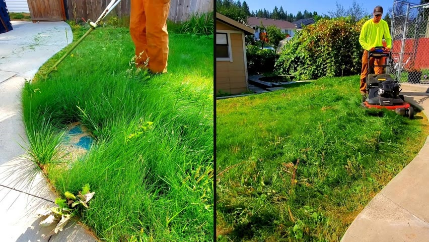 New Homeowner Of My Childhood Home Gets A FREE Lawn Cleanup (MEMORIES)
