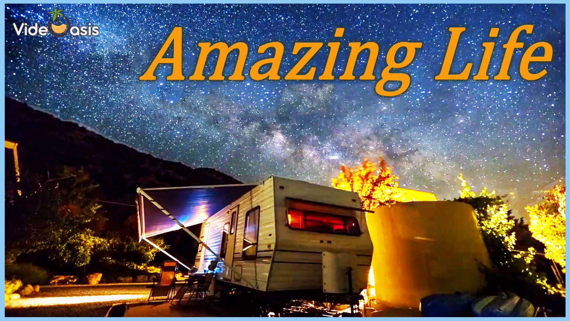 VideOasis Amazing- Amazing Traffic |VideOasis