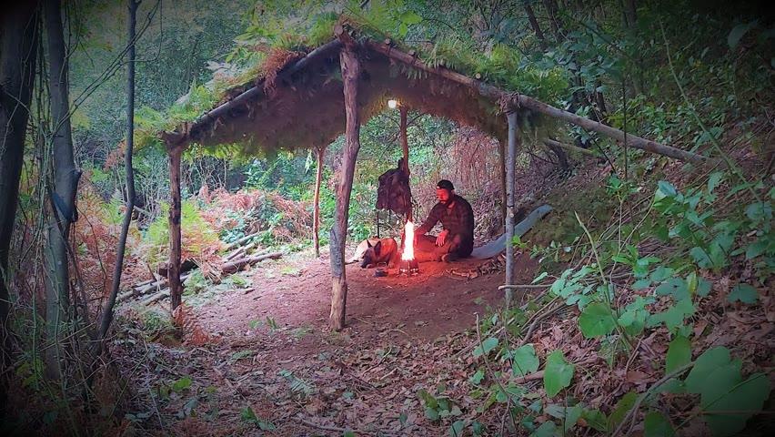 Primitive Bushcraft shelter Camping - Build Survival Tiny House - Off Grid living - Diy - Asmr