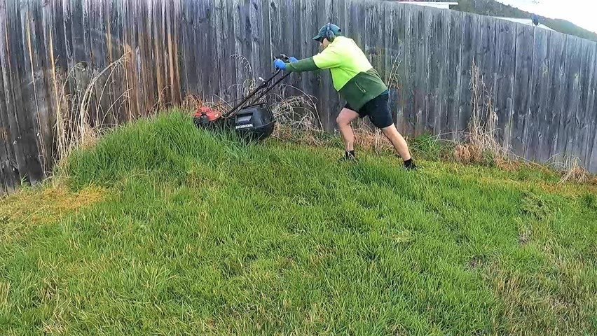 The Calm before the Storm | Overgrown Wet Lawn Makeover