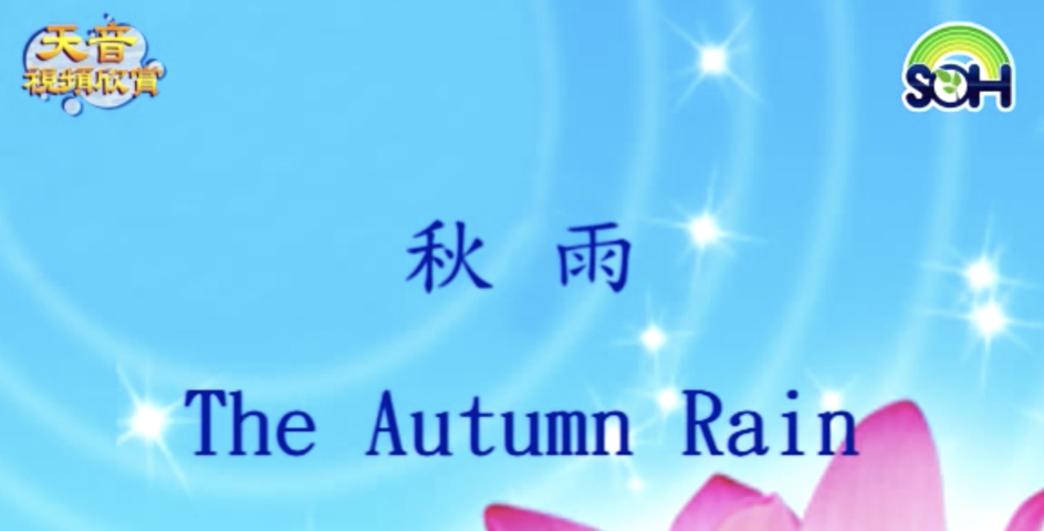 【天音視頻】秋雨