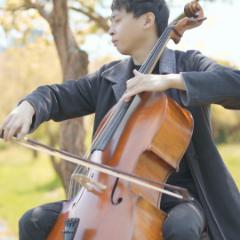 YoYo Cello