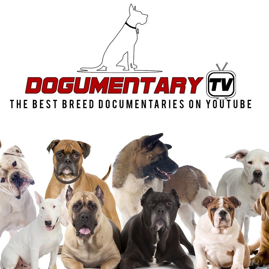 Dogumentary TV